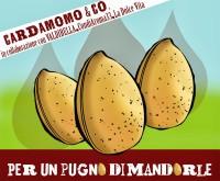 Banner mandorle bolg cardamomo & co